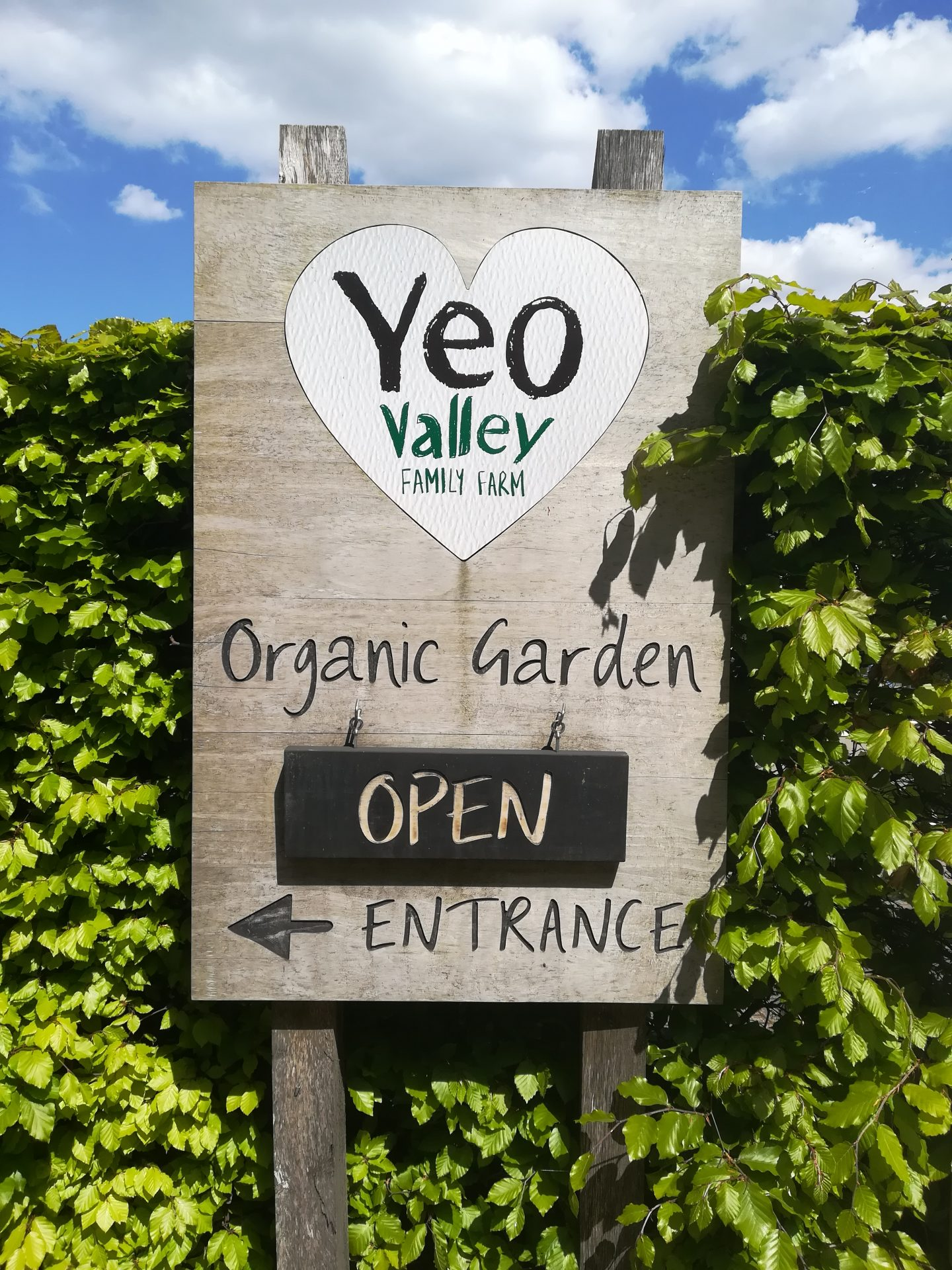 Open gate day at Yeo Valley